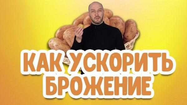 Видео Русская Дымка — Лайфхак: как ускорить процесс брожения браги для самогона?
