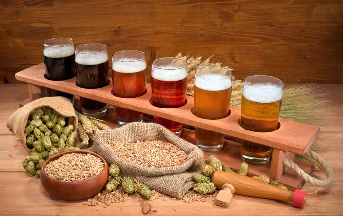 Домашнее пивоварение для начинающих. Этапы производства пива и рецепты
