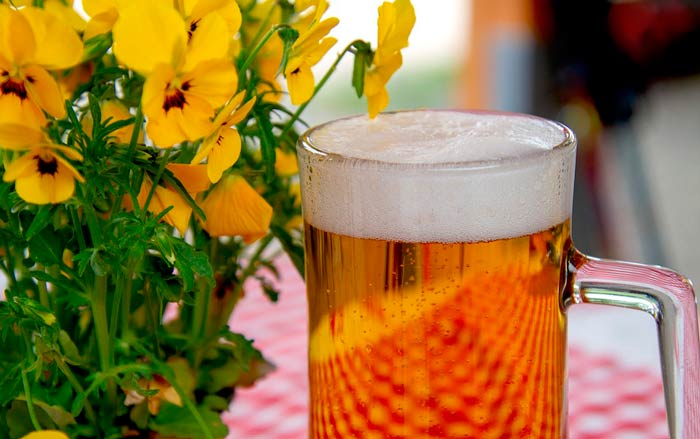 Рецепт жигулевского пива по советским стандартам
